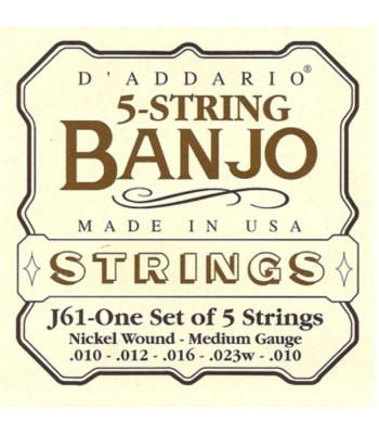 Banjo 5 String D'Addario NW Medium