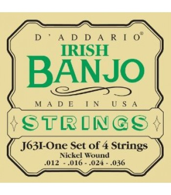 Banjo Tenor Irish D'Addario NW