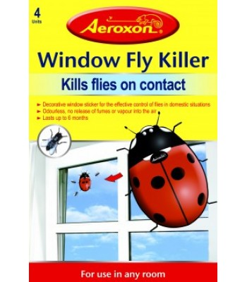 Window Fly Killer Ladybird